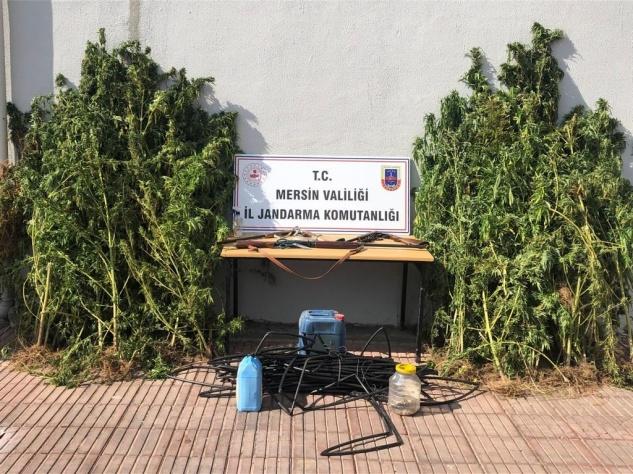 Anamur'da uyuşturucu operasyonu